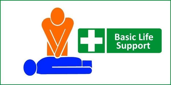 Online Basic Life Support Instructor Course Online Basic Life Support Train the Trainer Course The Mandatory Training Group UK grande
