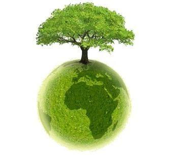ekologia swiadomosc ekologiczna edukacja